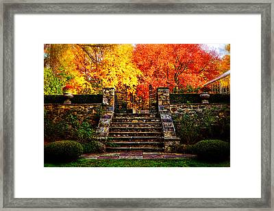 Gates To Autumn Framed Print by Lilia D