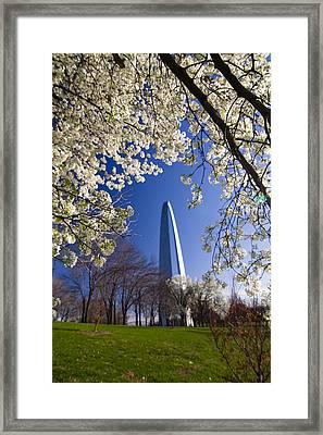 Gateway Arch With Cherry Tree In Bloom. Framed Print by Sven Brogren