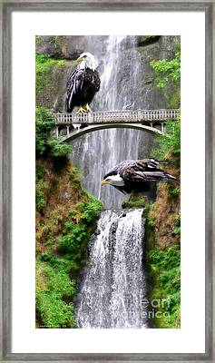 Gathering Of Eagles Framed Print by Constance Woods