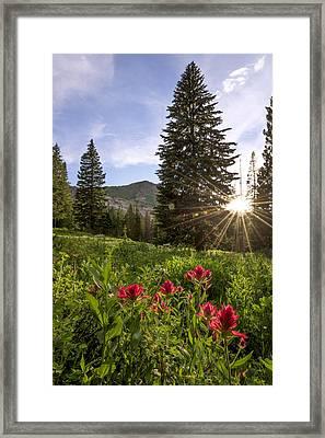 Gem Framed Print by Chad Dutson