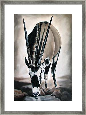 Gemsbok - Thirst Framed Print by Ilse Kleyn