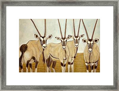 Gemsboks Or 0ryxs Triptych Framed Print by Isabelle Ehly