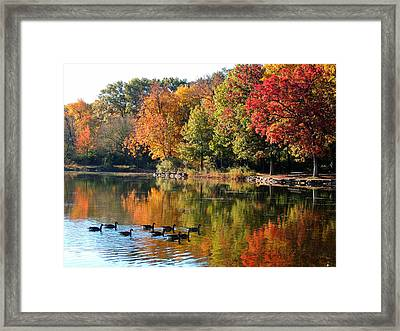 Gentle Reflections Framed Print by Teresa Schomig