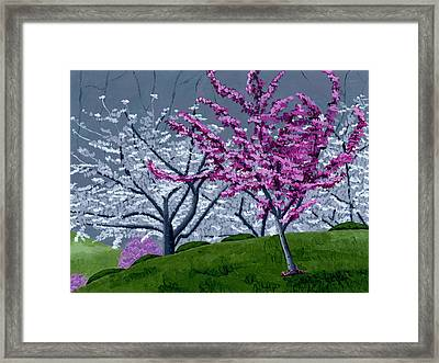 Georgia Spring Framed Print by Christina Steward