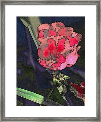 Geranium In The Grass Framed Print by Stephanie Grant