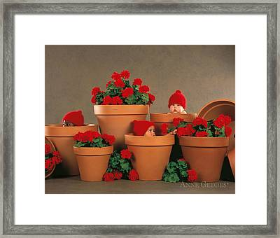 Geranium Pots Framed Print by Anne Geddes