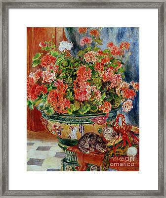Geraniums And Cats Framed Print by Pierre Auguste Renoir