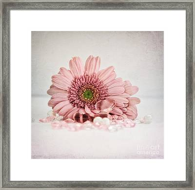Gerbera With Heart Framed Print by SK Pfphotography