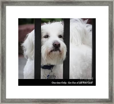 Get Out Of Jail Free Card Framed Print by Ella Kaye Dickey