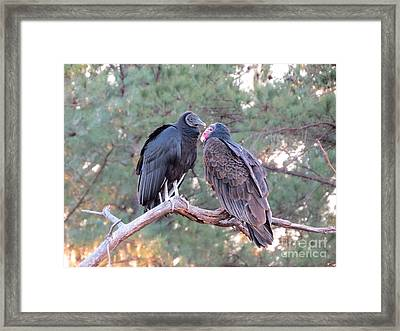 Getting Along Framed Print by Charles Green