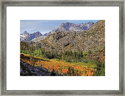 Getting The Shot Framed Print by Donna Kennedy