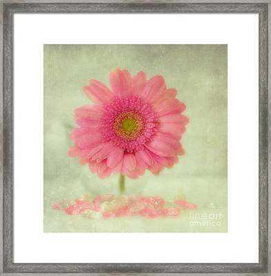 GH Framed Print by SK Pfphotography