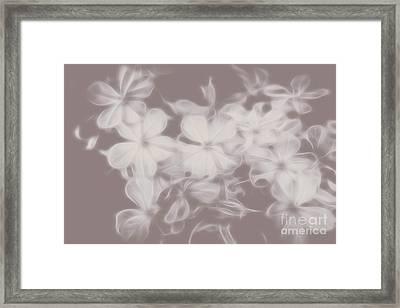 Ghost Flower - Souls In Bloom Framed Print by Jorgo Photography - Wall Art Gallery