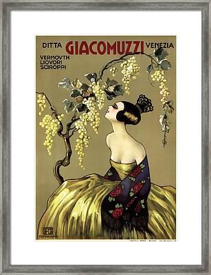 Giacomuzzi Italian Vintage Wine  C. 1900 Framed Print by Daniel Hagerman