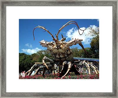 Giant Lobster Framed Print by Tammy Chesney