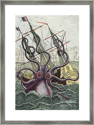 Giant Octopus Framed Print by Denys Montfort