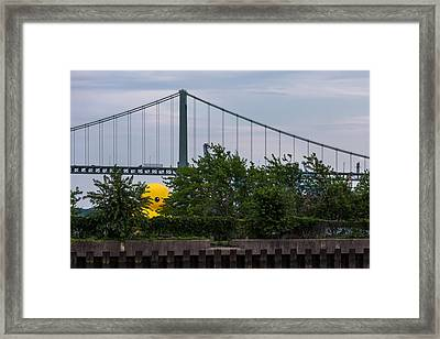 Giant Yellow Duck Walt Whitman Bridge Philly Framed Print by Terry DeLuco