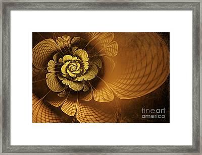 Gilded Flower Framed Print by John Edwards