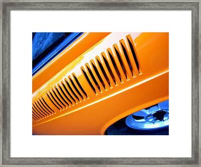 Gills Framed Print by Kevin D Davis