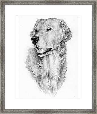 Ginger Framed Print by Laurie McGinley