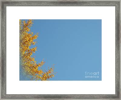 Ginkgo Fantasy In Blue Framed Print by Eena Bo