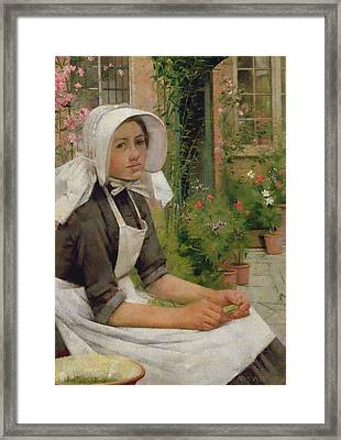 Girl Shelling Peas Framed Print by Albert Chevallier Tayler