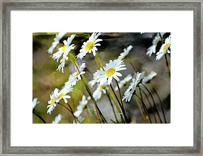 Glacier Wildflowers Framed Print by Marty Koch