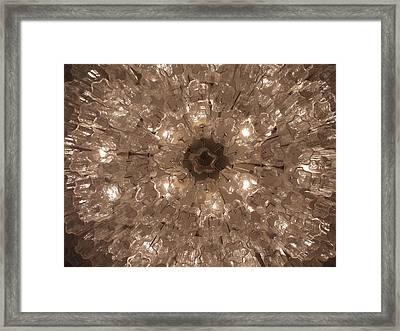 Glass Flower Framed Print by Anna Villarreal Garbis