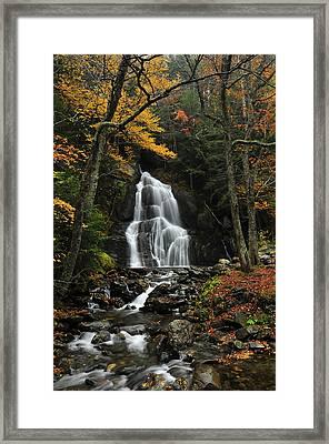 Glen Moss Falls Framed Print by Mandy Wiltse