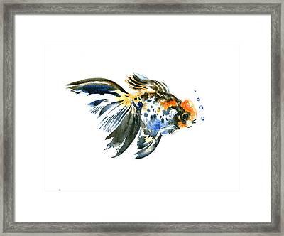 Goldfish Framed Print by Suren Nersisyan