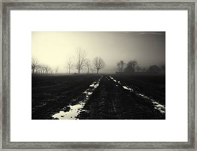 Gloomily Morning Framed Print by Mario Pejakovic