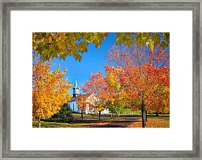 Glorious Colors Framed Print by Carolyn Derstine