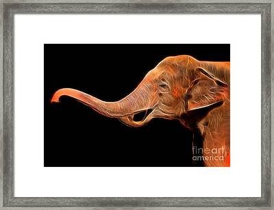 Glow Image Of Asian Elephant Framed Print by Noppharat Manakul