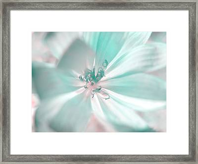 Glowing Flower, Mint Framed Print by Nat Air Craft