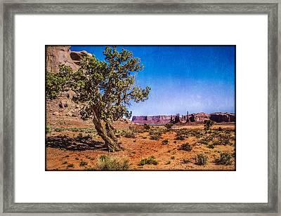 Gnarled Utah Juniper At Monument Vally Framed Print by Roger Passman