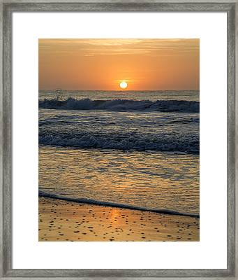 Go Your Own Way Framed Print by Betsy C Knapp
