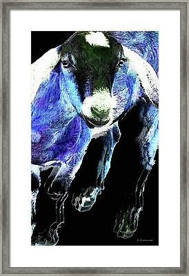 Goat Pop Art - Blue - Sharon Cummings Framed Print by Sharon Cummings