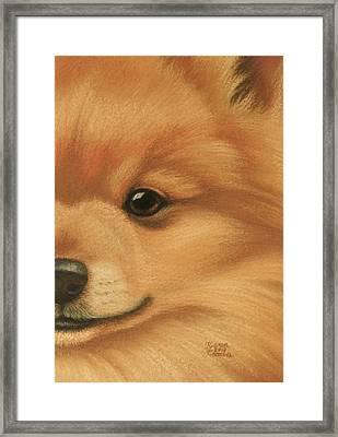 Goggie Pomeranian Framed Print by Karen Coombes