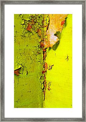 Painted Framed Print featuring the photograph Going Green by Skip Hunt