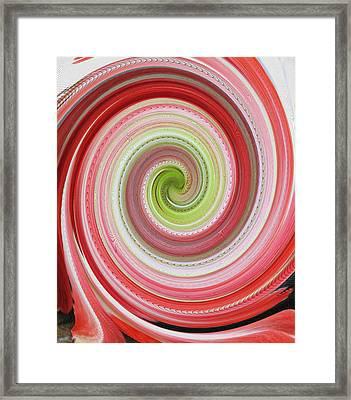 Going In Circles Framed Print by Barbara McDevitt