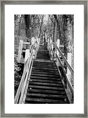 Going Up Framed Print by Jamie Lynn