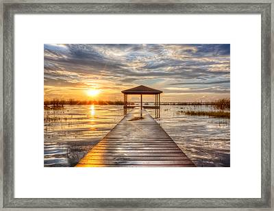 Gold And Silver Framed Print by Debra and Dave Vanderlaan