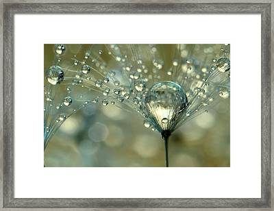 Gold Sparkles Framed Print by Sharon Johnstone