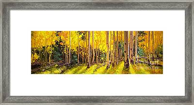 Golden Aspen In The Light Framed Print by Gary Kim