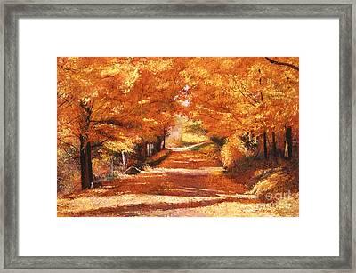 Golden Autumn Framed Print by David Lloyd Glover