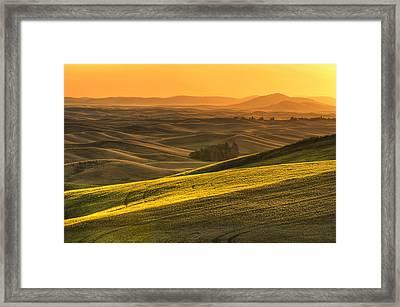 Golden Grains Framed Print by Mark Kiver