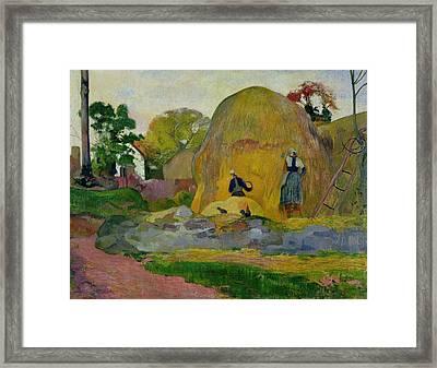 Golden Harvest Framed Print by Paul Gauguin