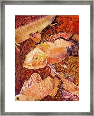 Golden Koi Framed Print by Pat Saunders-White