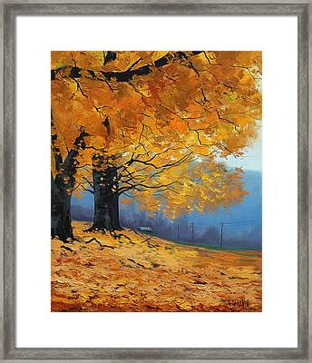 Golden Leaves Framed Print by Graham Gercken