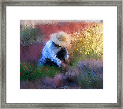 Golden Light Framed Print by Colleen Taylor